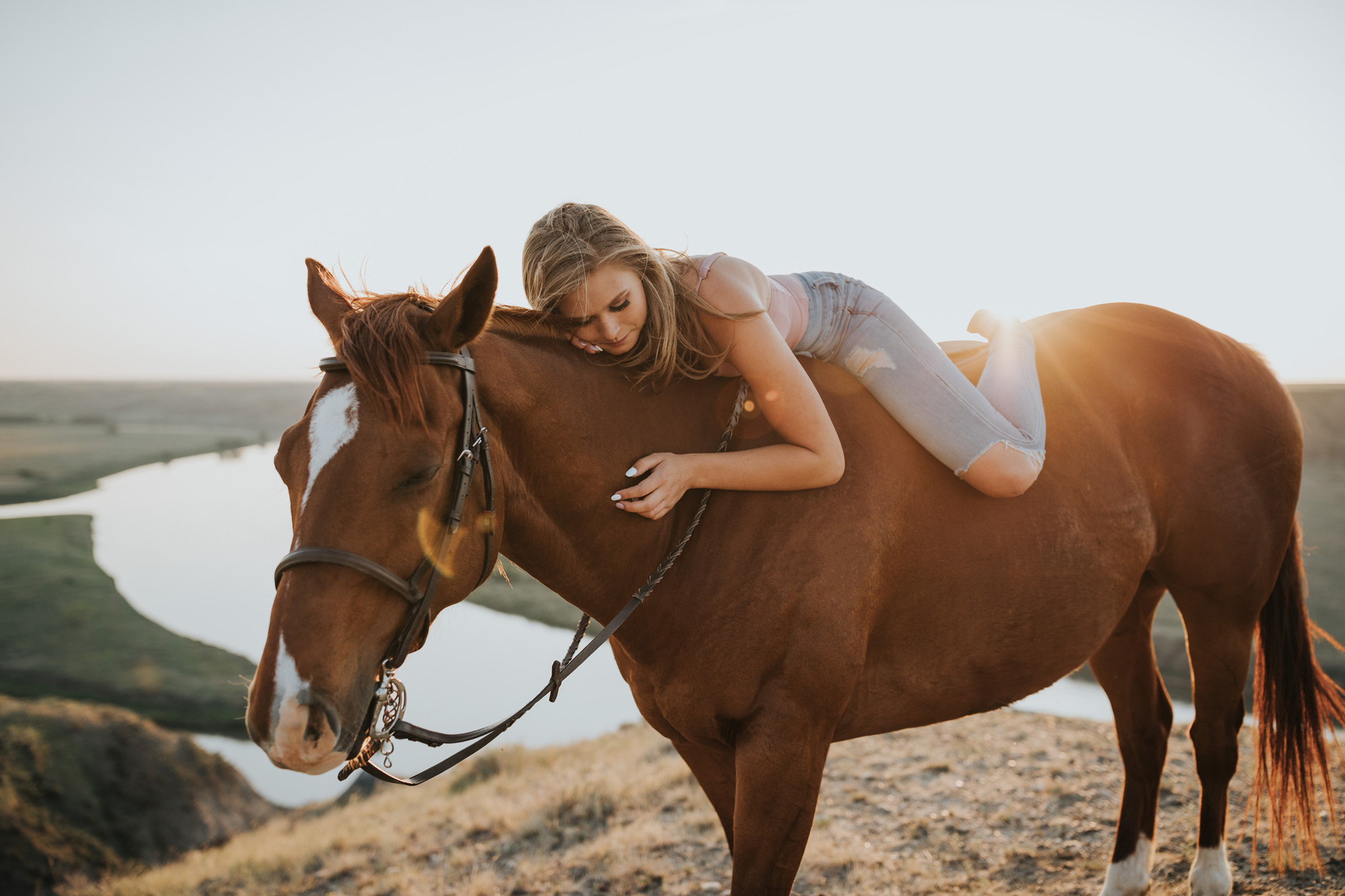 equine grad photo laying on horse lens flare