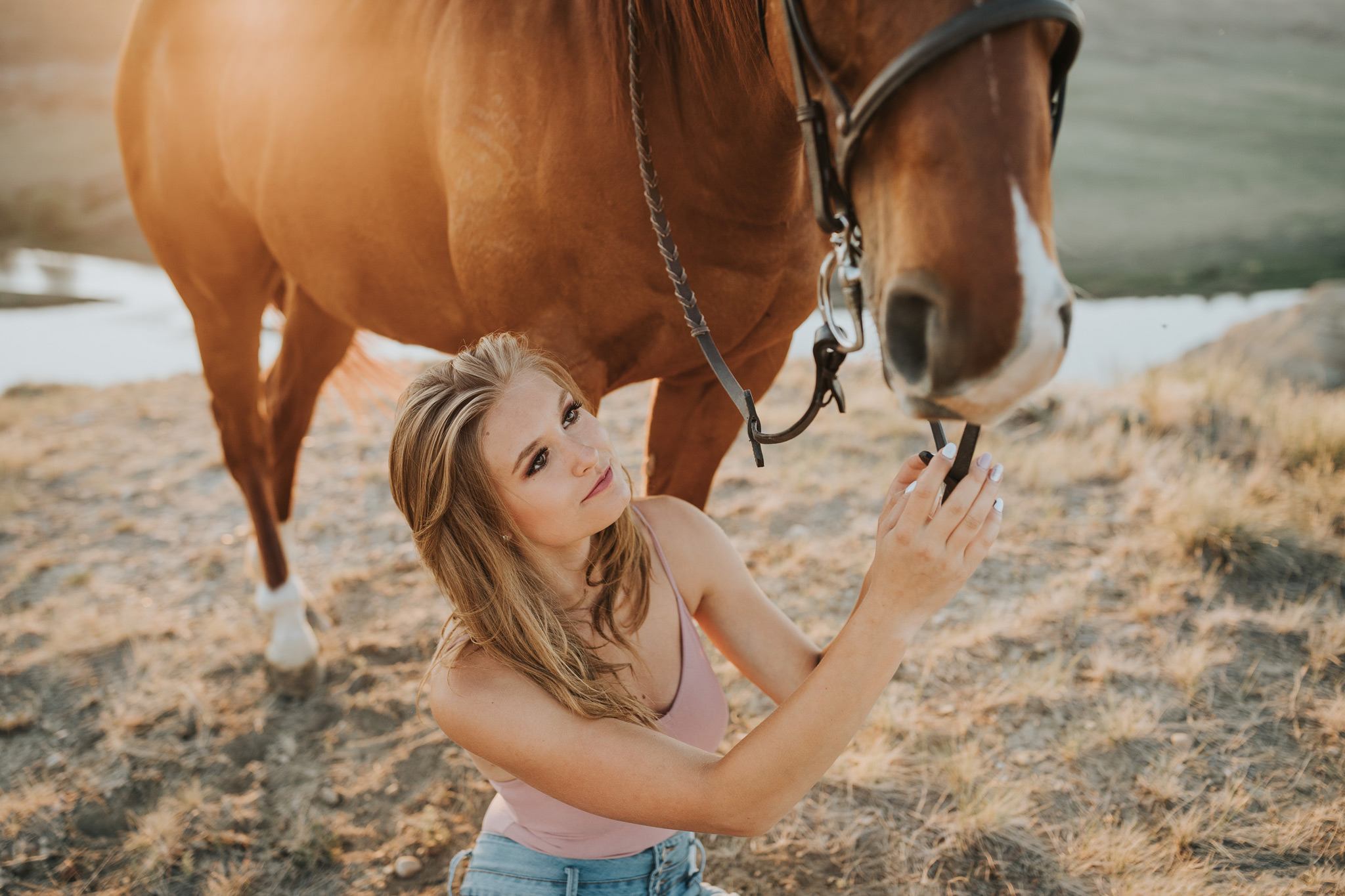 equestrian photo session girl sitting beside horse reaching for reins