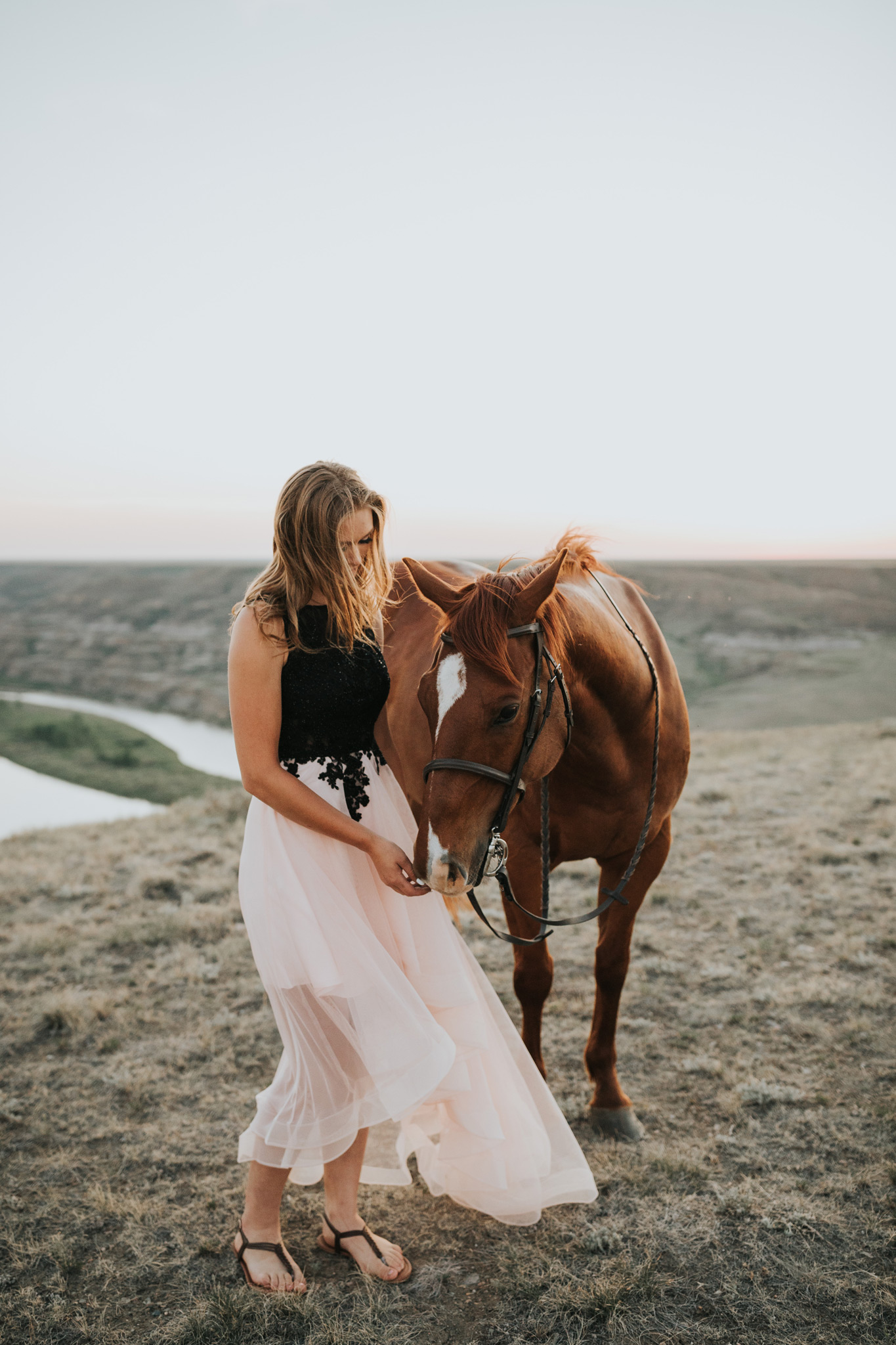grad girl petting horse in prom dress