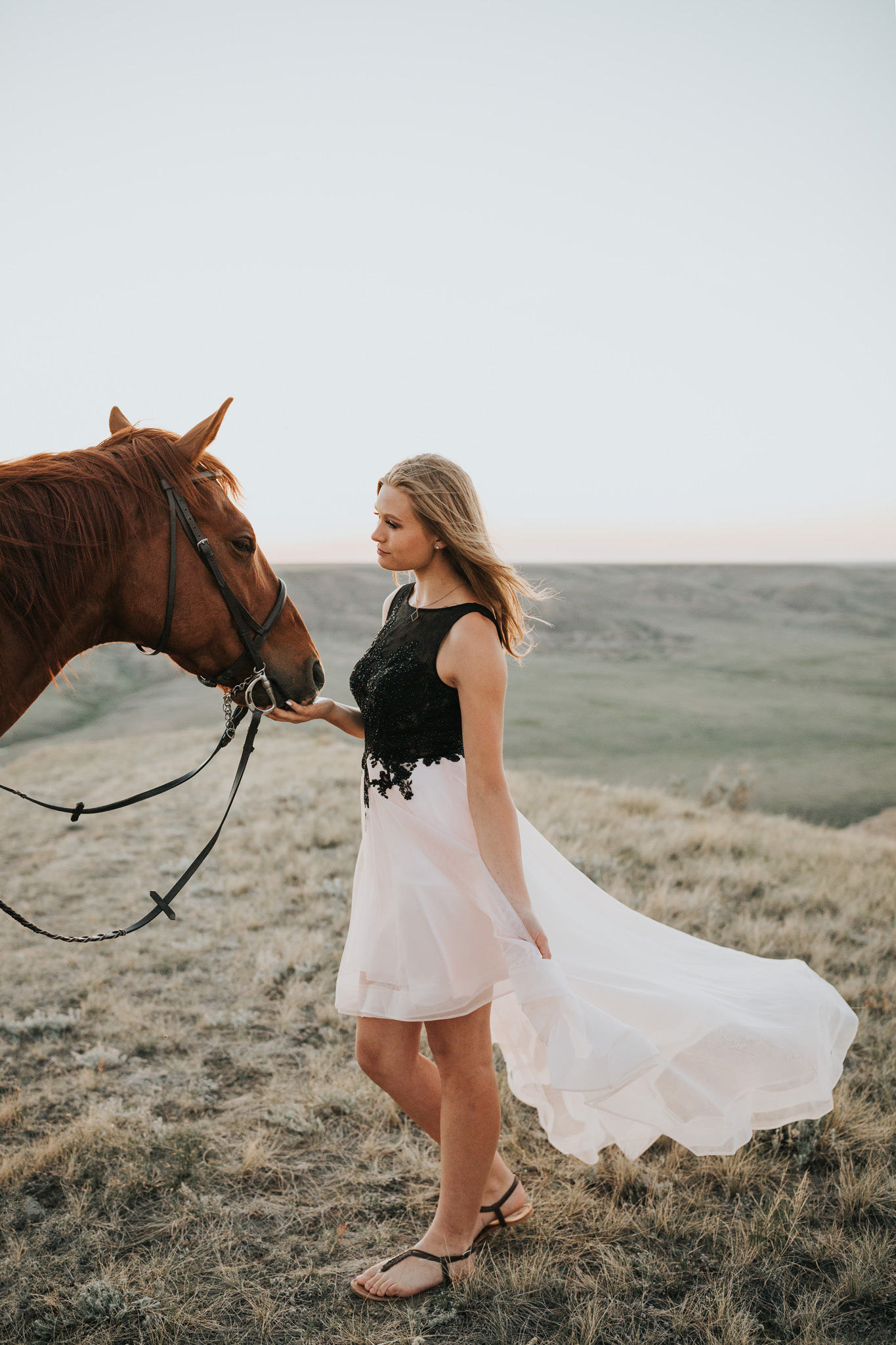 girl in prom dress facing horse equestrian photo