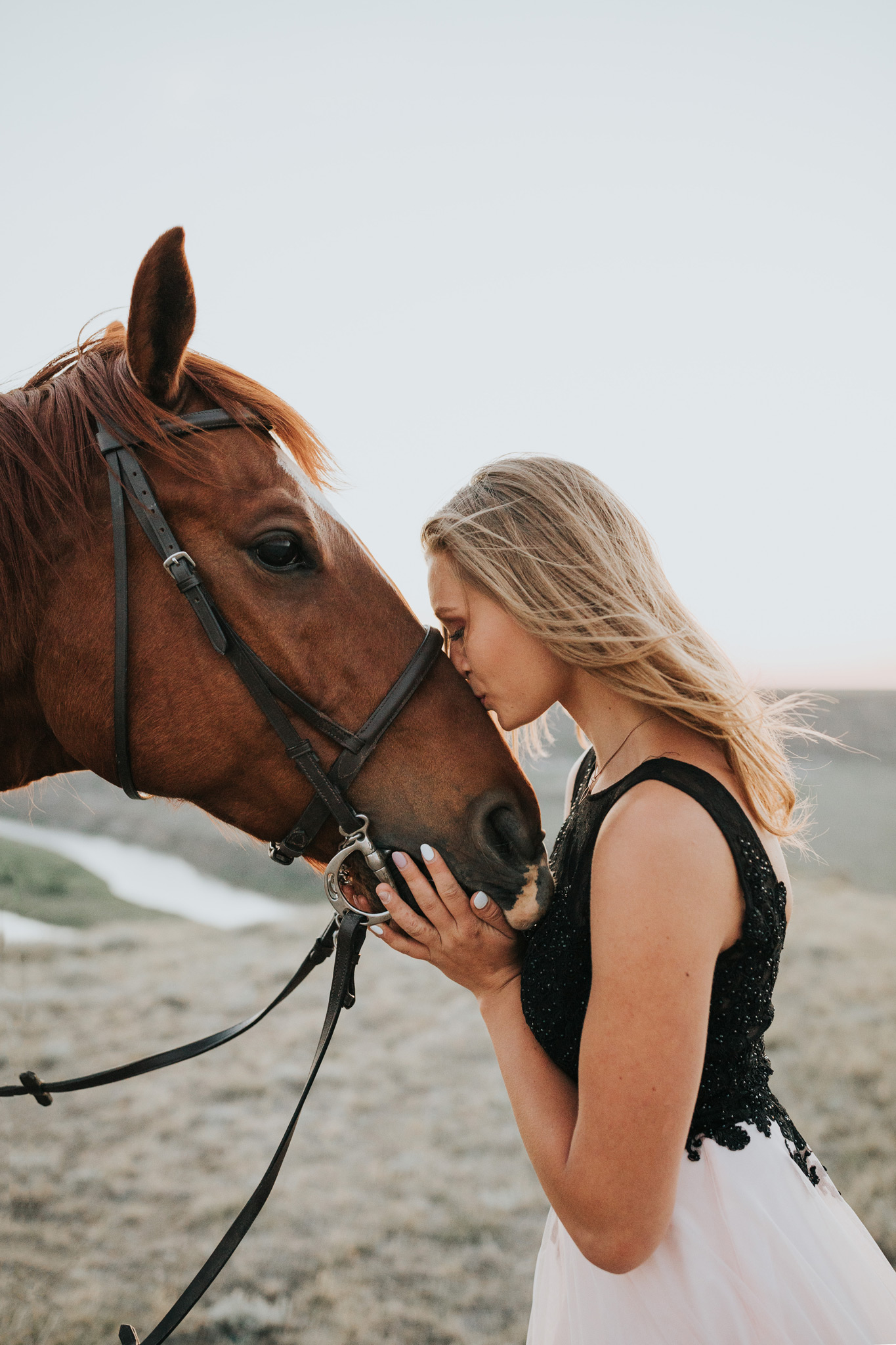 grad girl kissing horse on nose equine photo