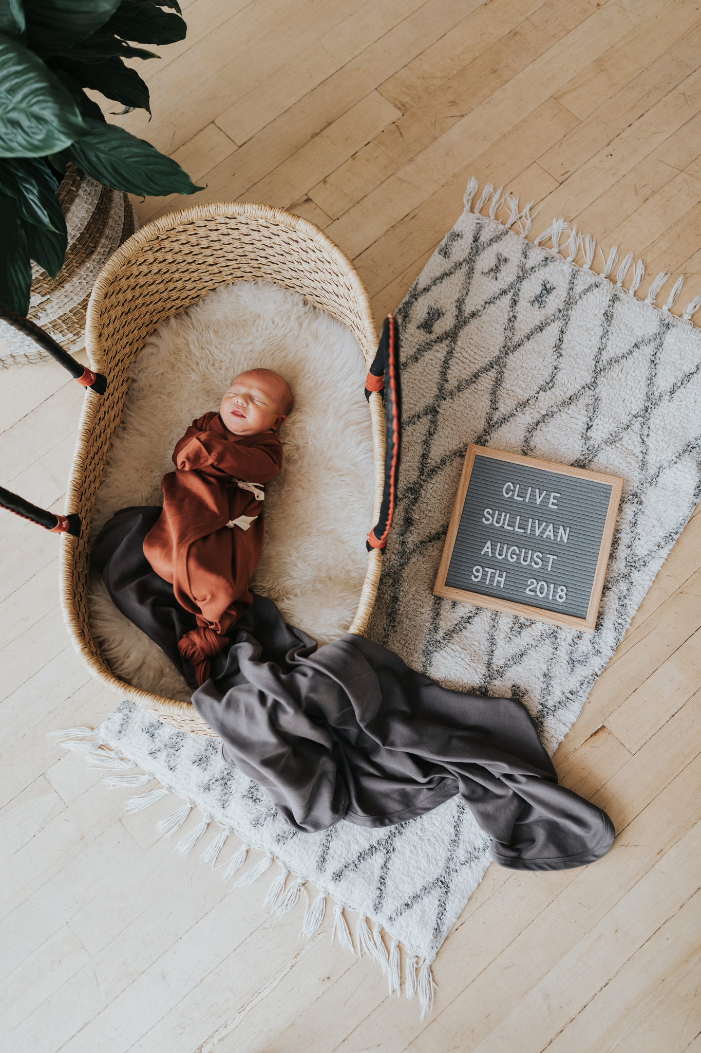 newborn baby laying in bassinet basket with birth announcement sign