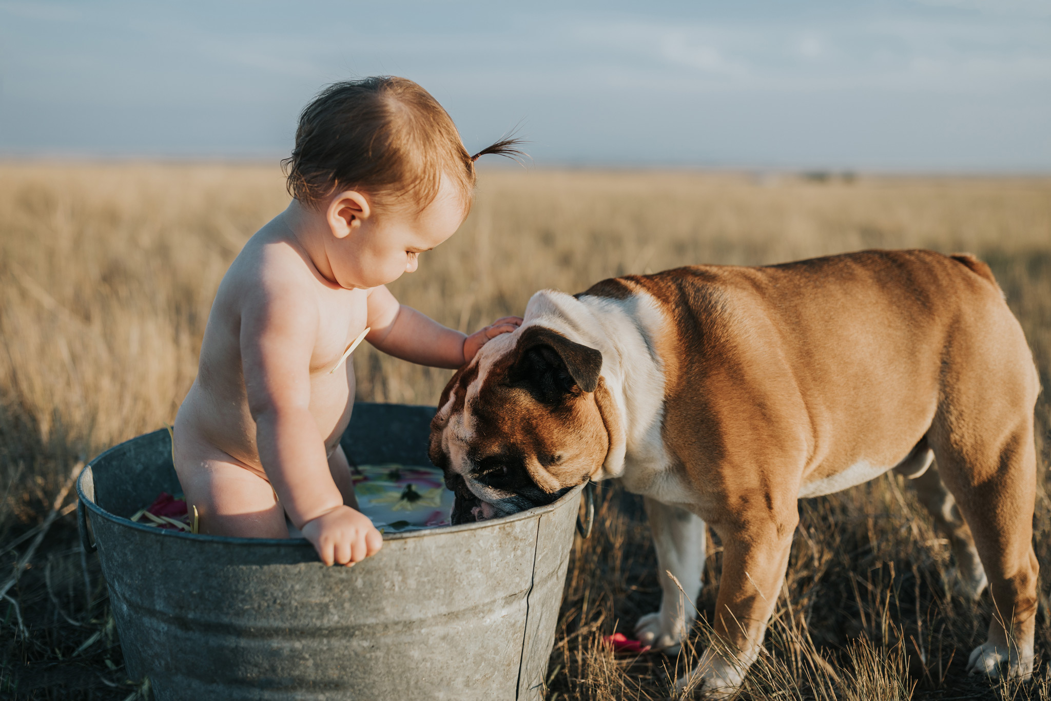 baby standing in milk bath petting pet bulldog