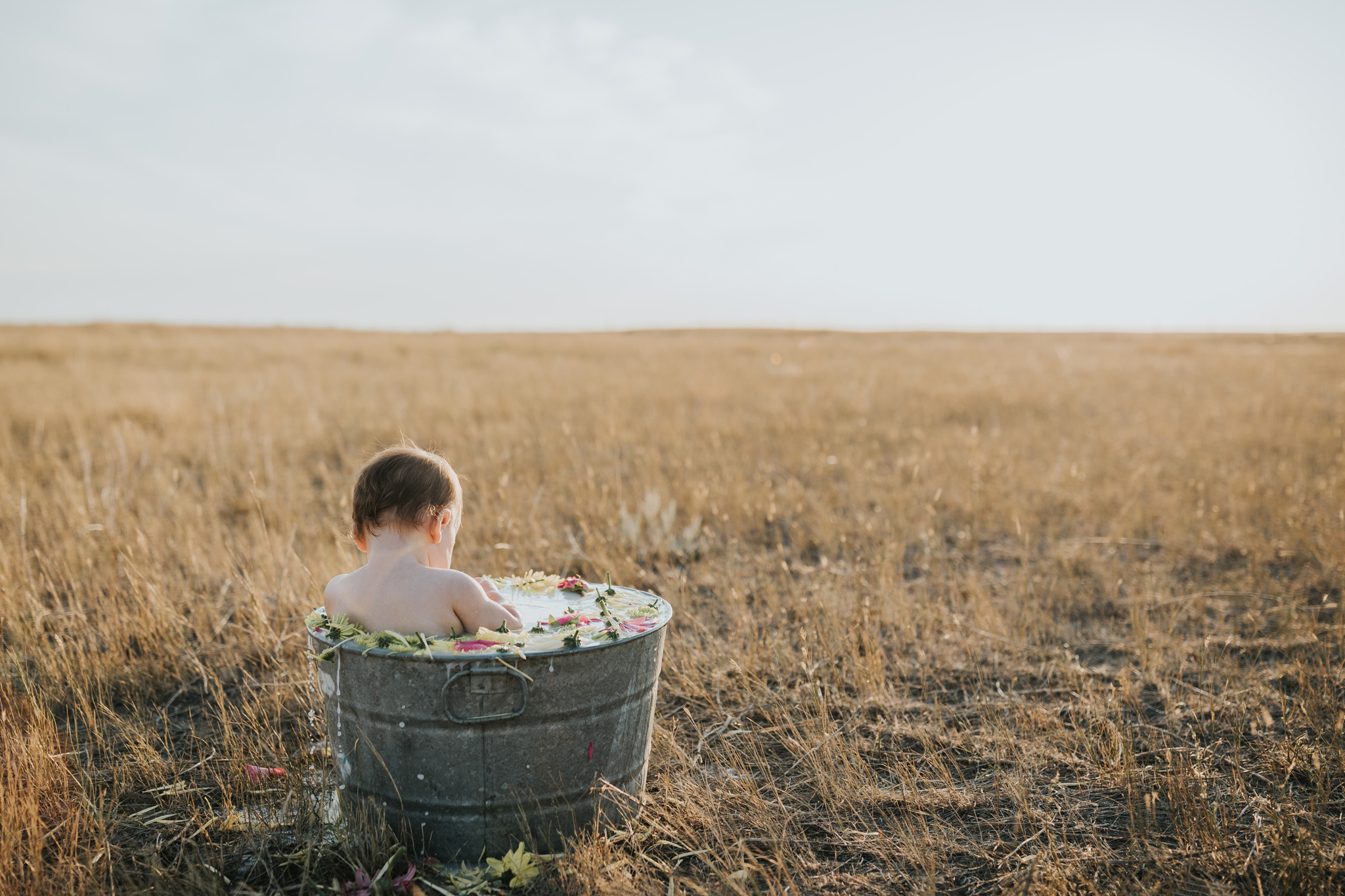 baby sitting in flower milk bath at sunset alberta farm