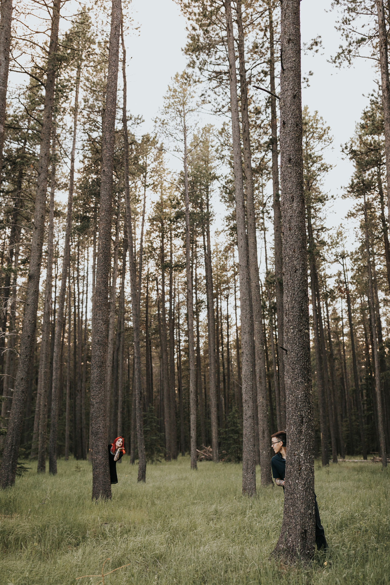 couple hiding behind trees in forest cute elkwater cypress hills alberta engagement photo