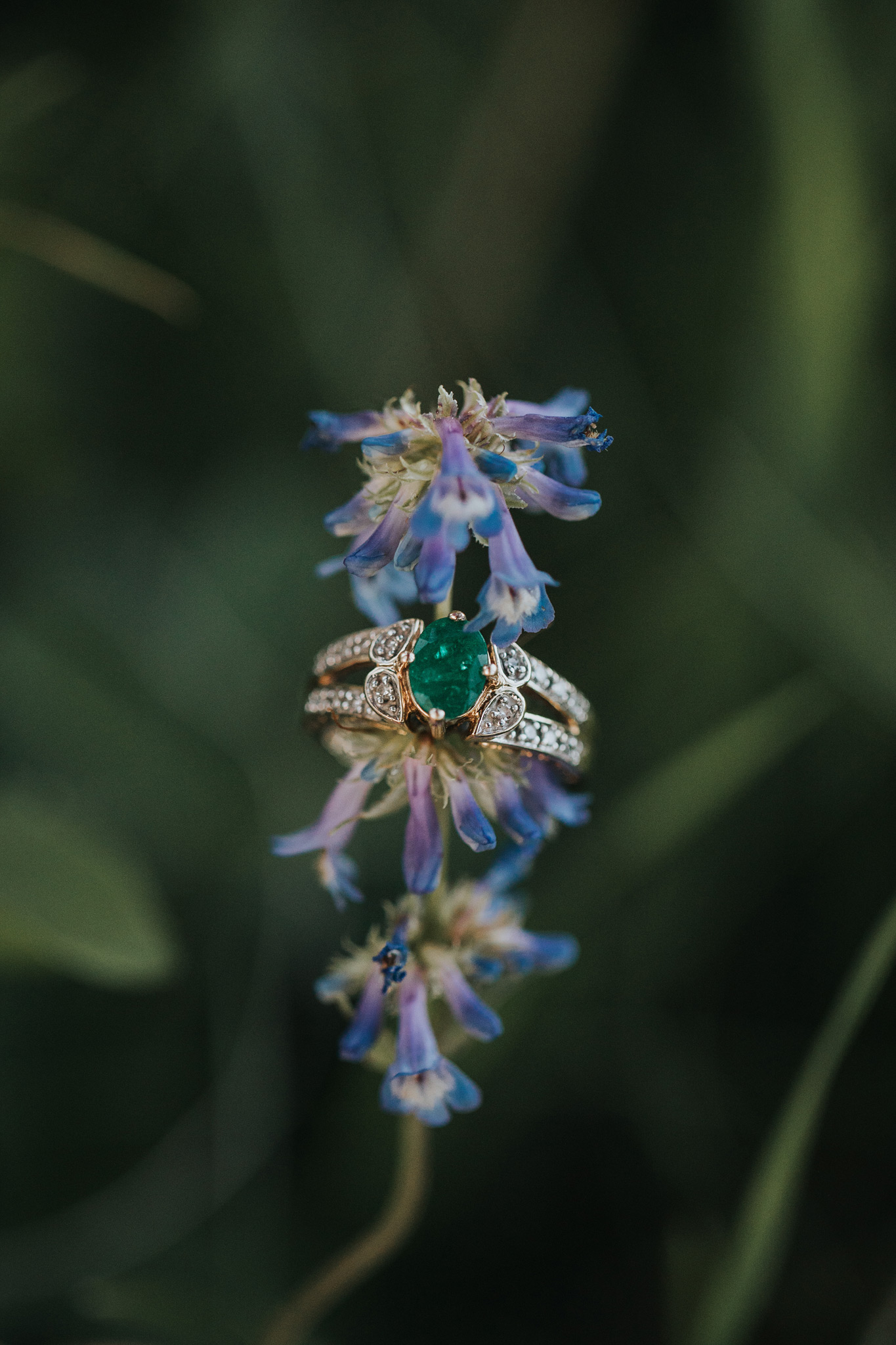 closeup emerald engagement ring on bluebell flowers cypress hills alberta
