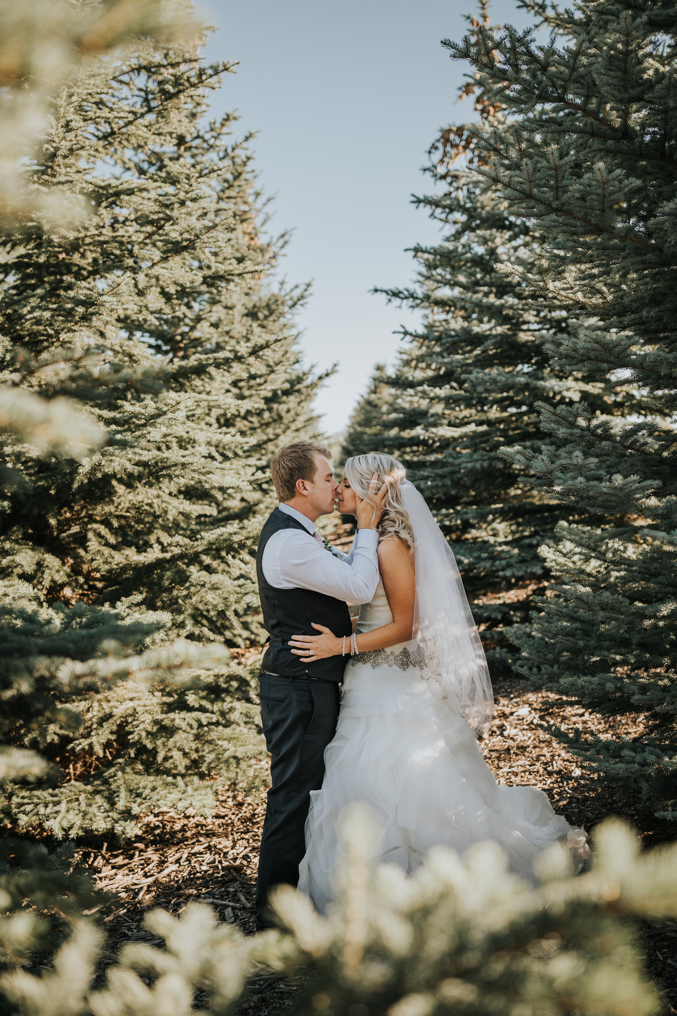 bride and groom kiss among the trees