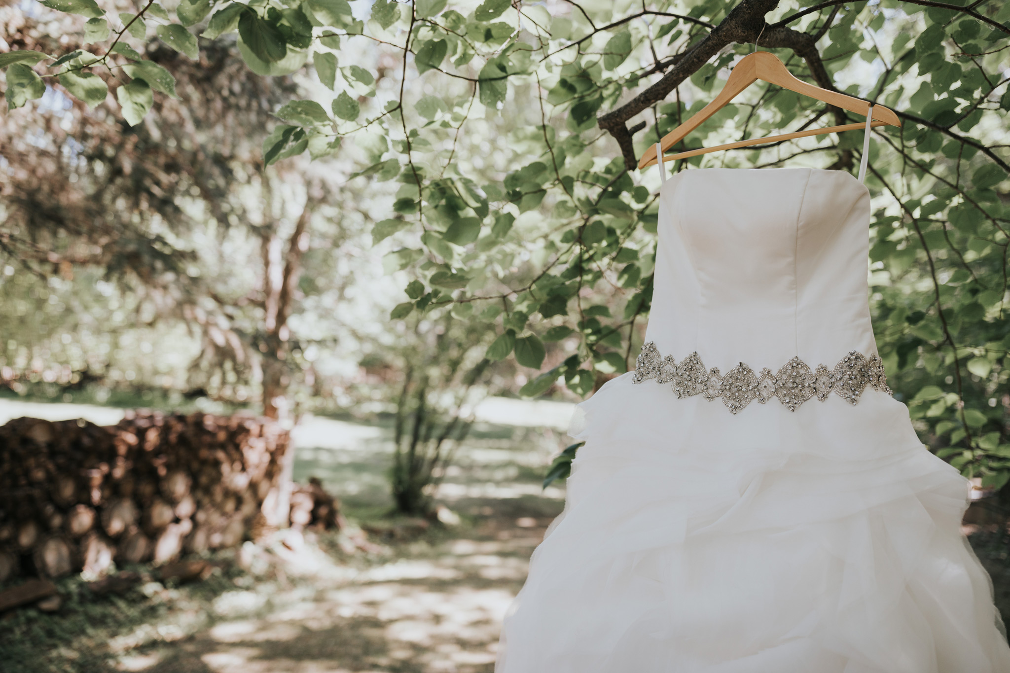 bride's wedding dress hanging in a tree medicine hat alberta wedding
