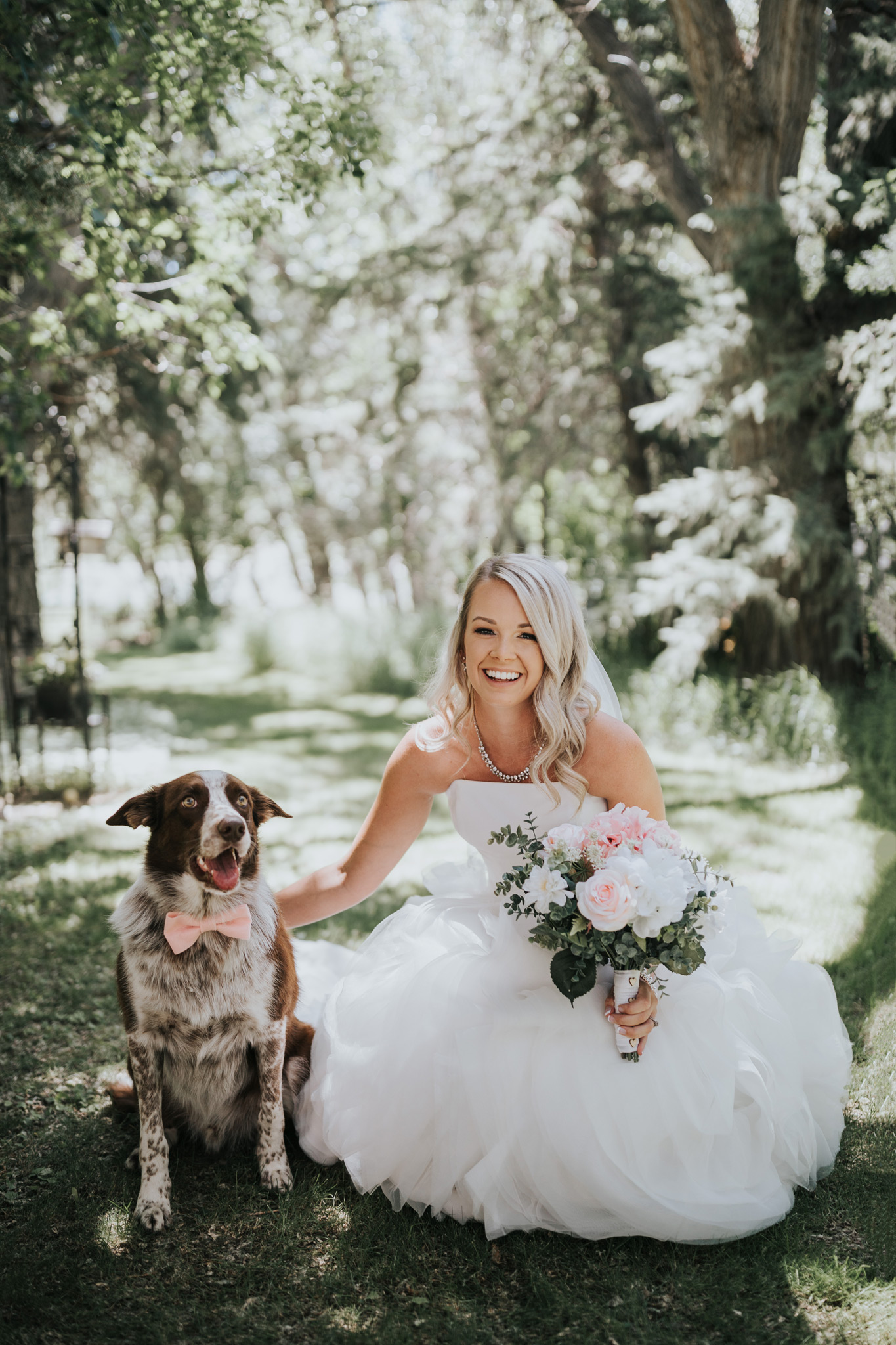 photo of bride with her dog wearing a bowtie medicine hat alberta wedding
