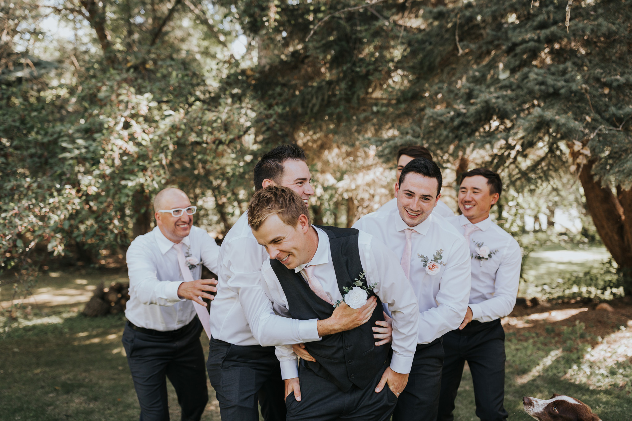 groomsmen run up behind groom and tackle him laughing fun photo