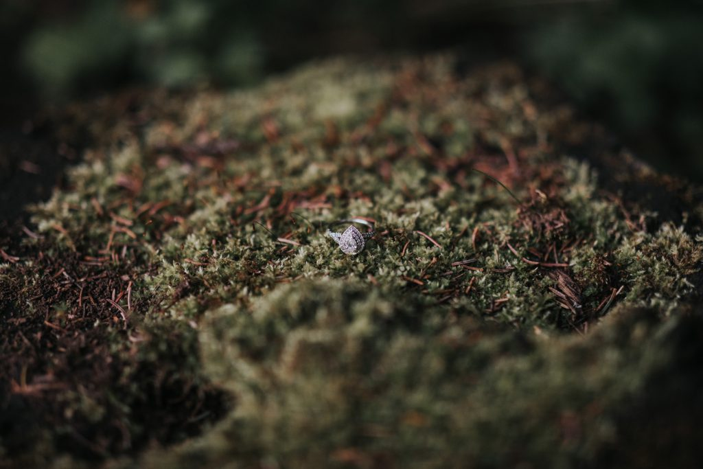 engagement ring photo moss tree stump cypress hills