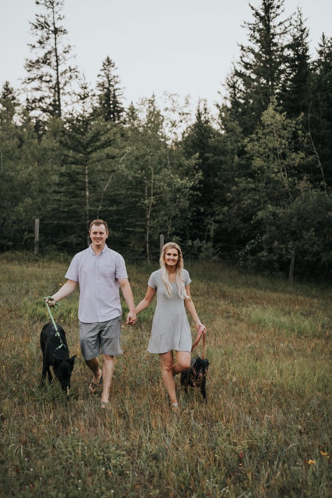 engaged couple walks with two dogs spruce coulee forest