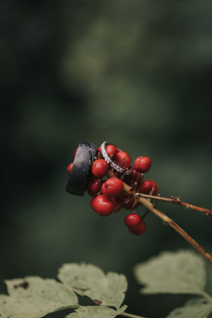 wedding bands photo red berries cypress hills alberta