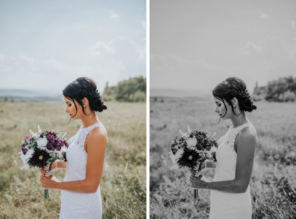 portrait of bride at head of mountain cypress hills beautiful