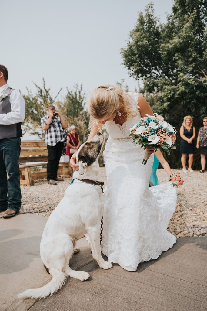 bride pets her dog after wedding ceremony