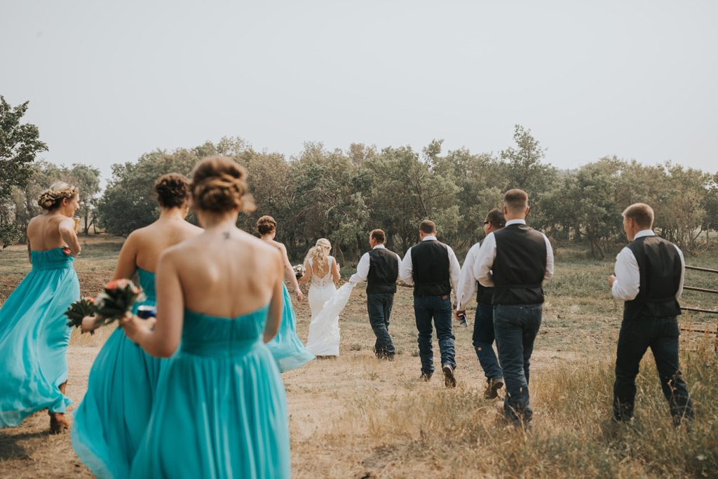 bridal party walks through field alberta farm wedding