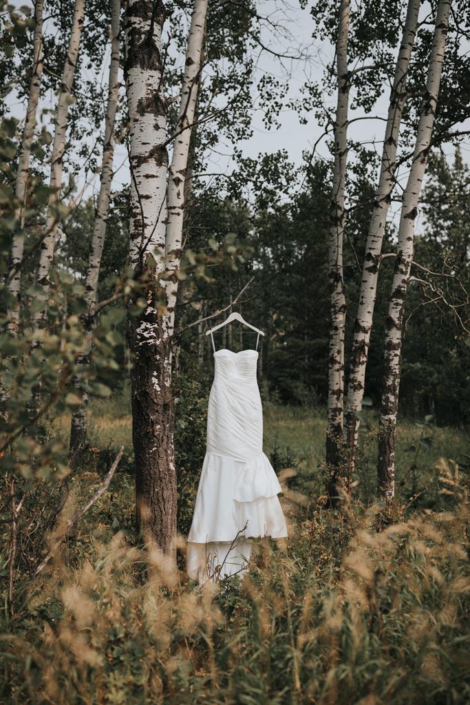 brides dress in elkwater forest alberta